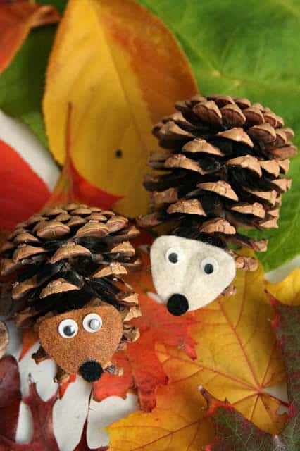 Diy: Pinecone Owl & Hedgehog Do-It-Yourself Ideas