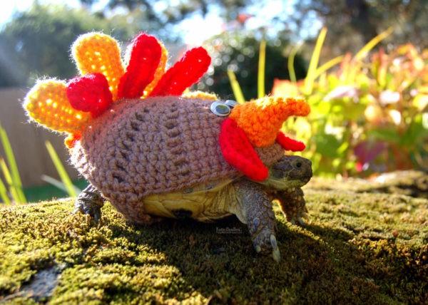 Crocheted Tortoise Cozy Recyclart