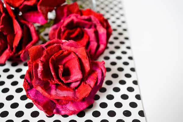 Diy: Roses from Egg Crates Do-It-Yourself Ideas Recycled Packaging