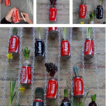Vertical Garden with Coca Cola Cans