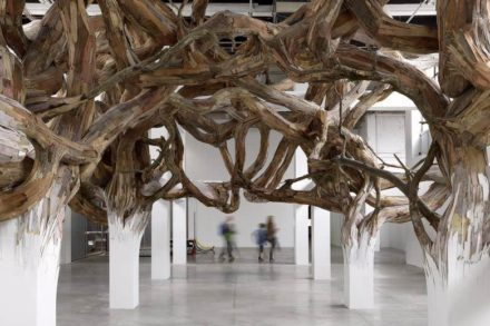 Repurposed Wood To Build Giant Root You Can Explore