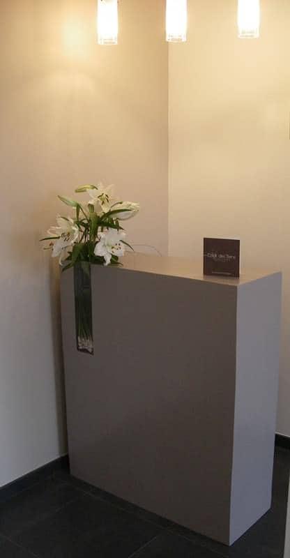 Comptoir-carton-SG