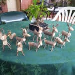 More Reindeers :)