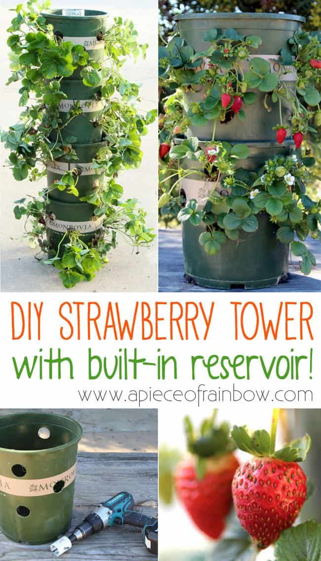 Diy: Strawberry Tower With Built-in Reservoir • Recyclart