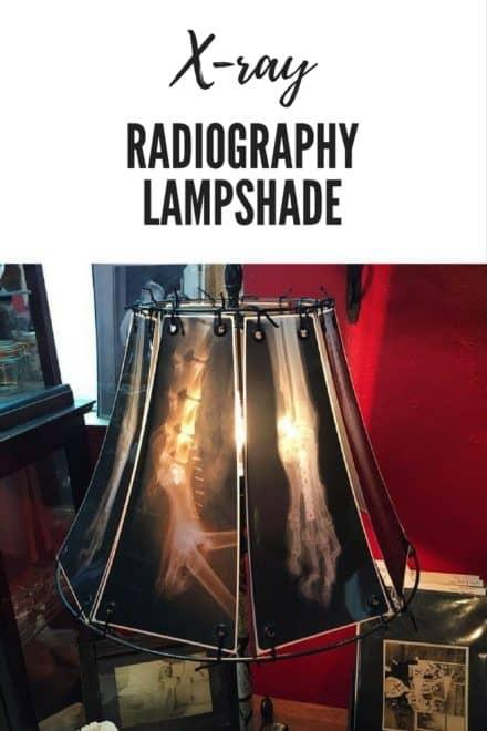 X-ray Radiography Lampshade