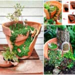 Beautiful Idea For Reusing Broken Clay Pot / Lindas Ideias Para Reaproveitar Vasos De Flores