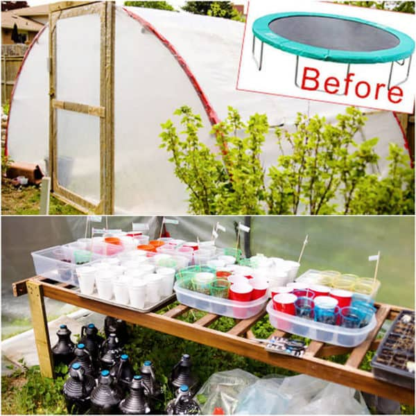 DIY-Greenhouses-apieceofrainbowblog-18