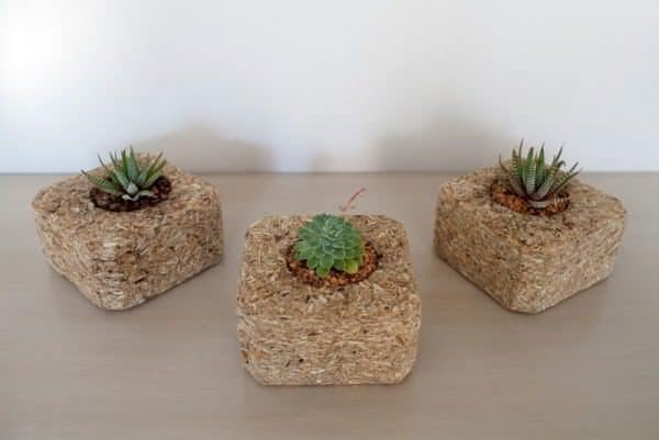 Indoor-small-pots-made-with-pallets-4-600x401