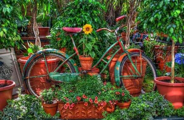 upcycled-old-garden-bike-using-flowers-for-decor-in-the-backyard