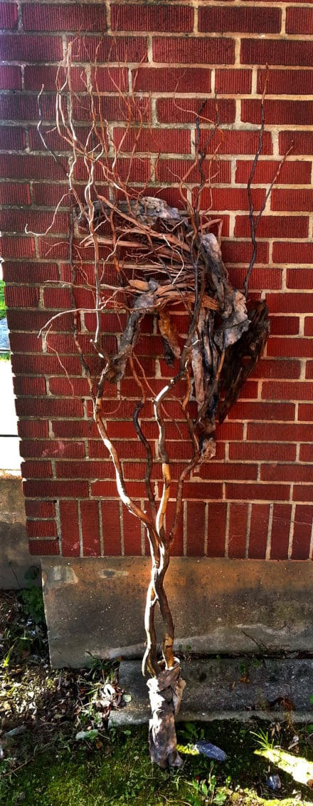 Nesting Ravenwood Wood Sculpture