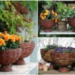 Flower Baskets From Willow Branches