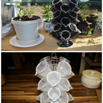 Herb Garden from Reused Coffee Pods