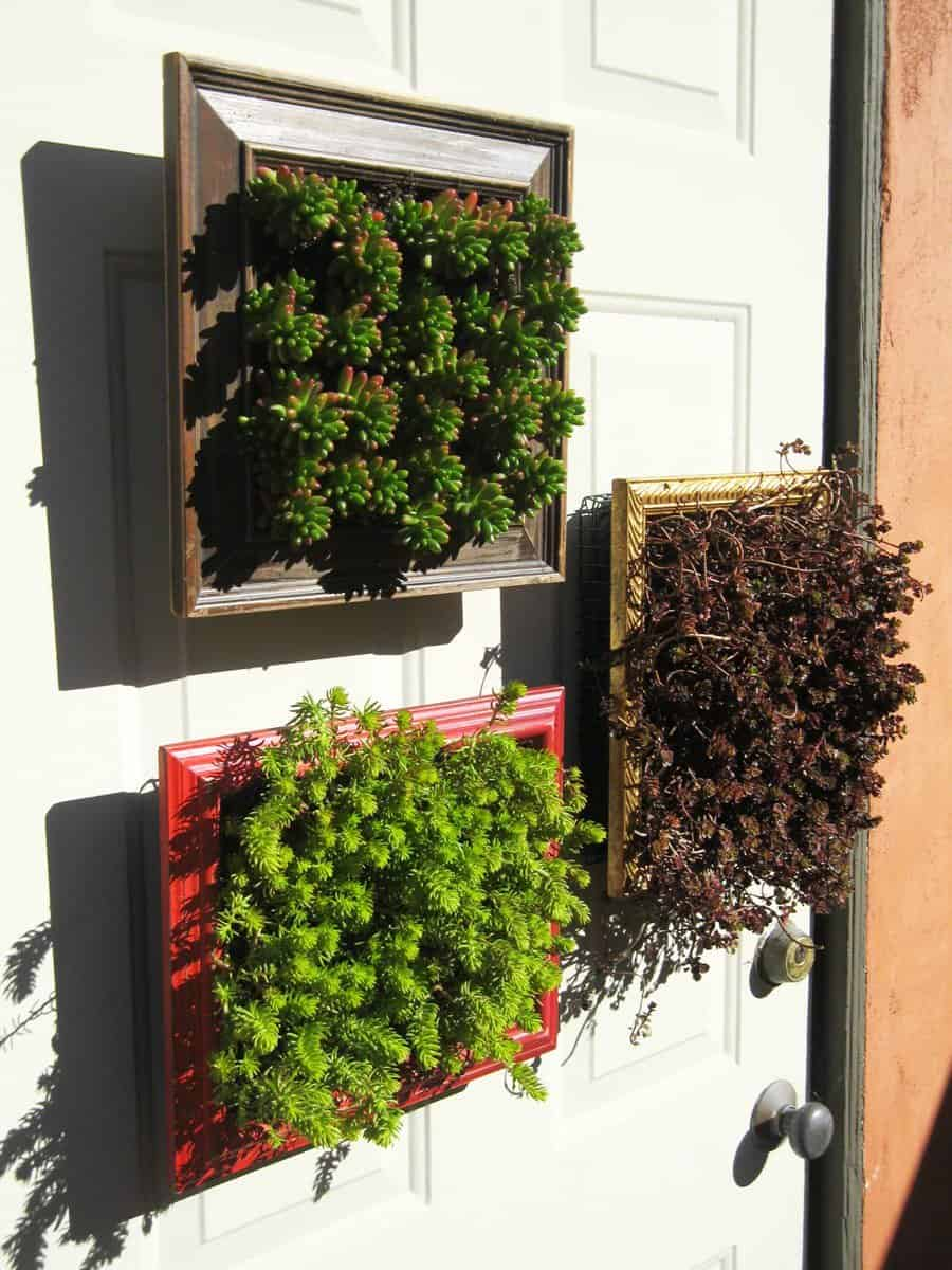 Vertical Planters from Repurposed Picture Frames • Recyclart