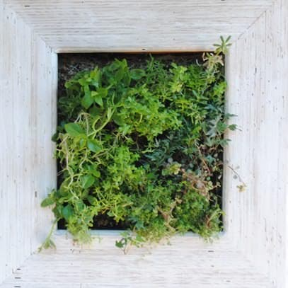 recyclart.org-living-wood-frame-made-recycling4