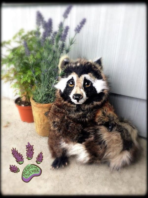 Recycled Clothing Raccoon Noni Clothing & Accessories