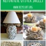10 Beautiful Ways to Repurpose Oyster Shells