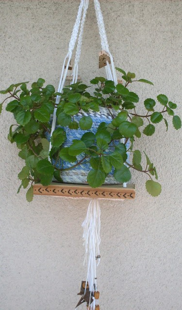 Decorative Macrame Plant Holder / Portamaceta Colgante