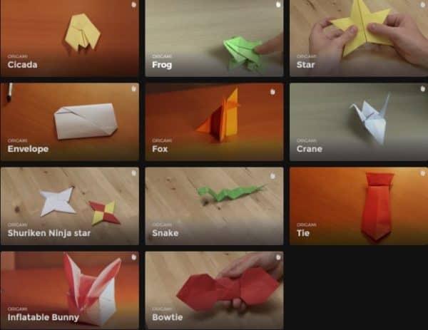 Learn Origami Techniques now advance to harder projects, like a cicada, a bowtie, an inflatable bunny and more!