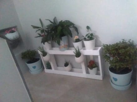 Urban Pallet Wood Plant Stand: Great For Small Spaces