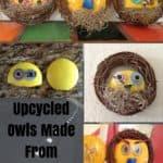Botts Dots Lane Reflector Upcycled Owls