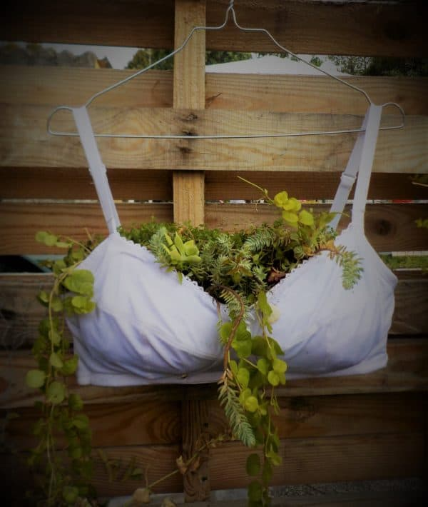 Display your Upcycled Bra Planter by using a clothes hook.