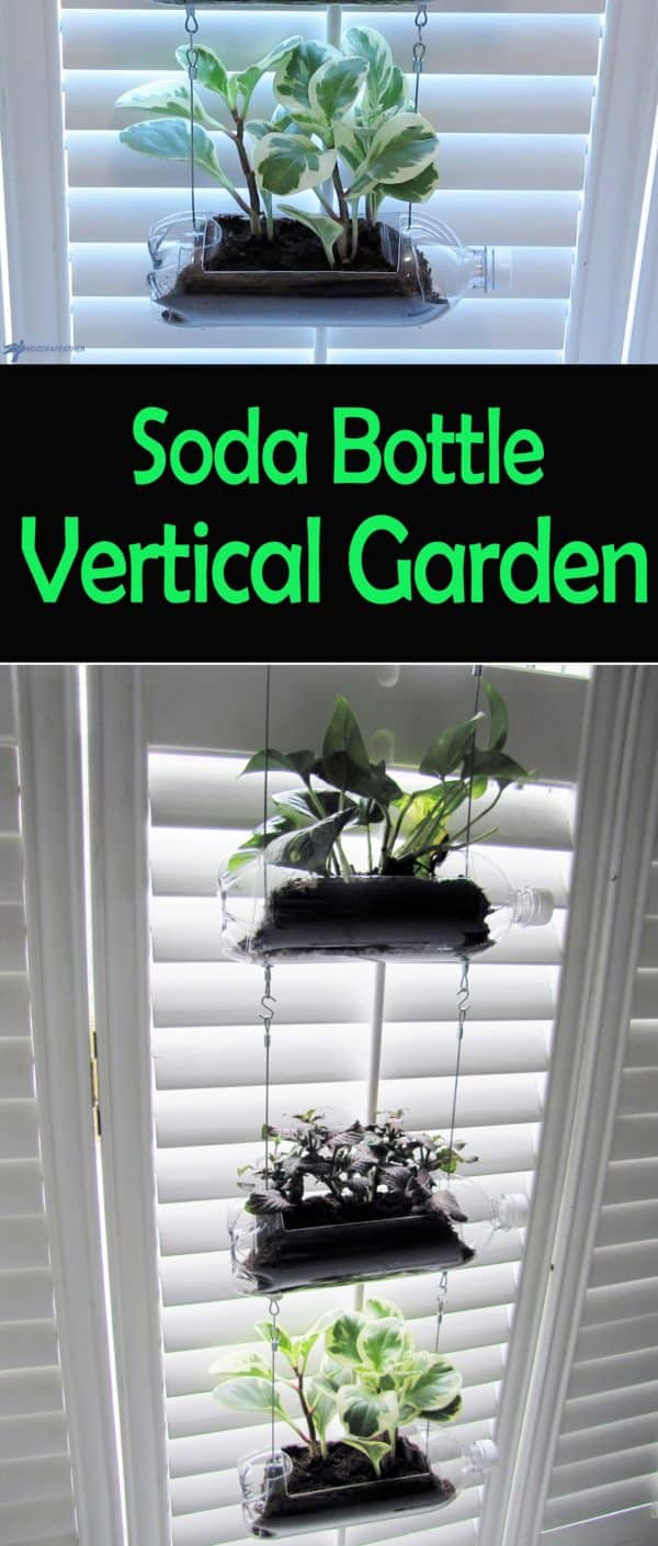 Diy Video Tutorial: Upcycled Soda Bottle Vertical Garden Diy video tutorials Garden Ideas Recycled Plastic