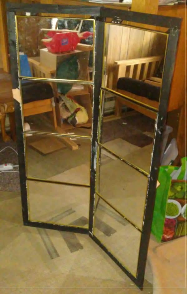 Upcycled Mirror Frame Helps Plants Grow! Wood & Organic