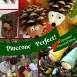 12 Upcycled Christmas Pinecone Ideas You Can Easily Make