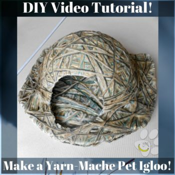 Diy Yarn-mache Pet Igloo For Dogs & Cats!