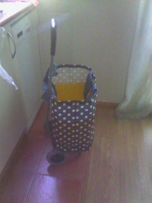 Put the plastic container inside the canvas bag, and put it all in your cart. Now you have a Sturdy Shopping Trolley.