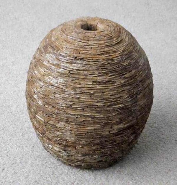 Recycled Cardboard Wasp Nest Pot Recycled Cardboard