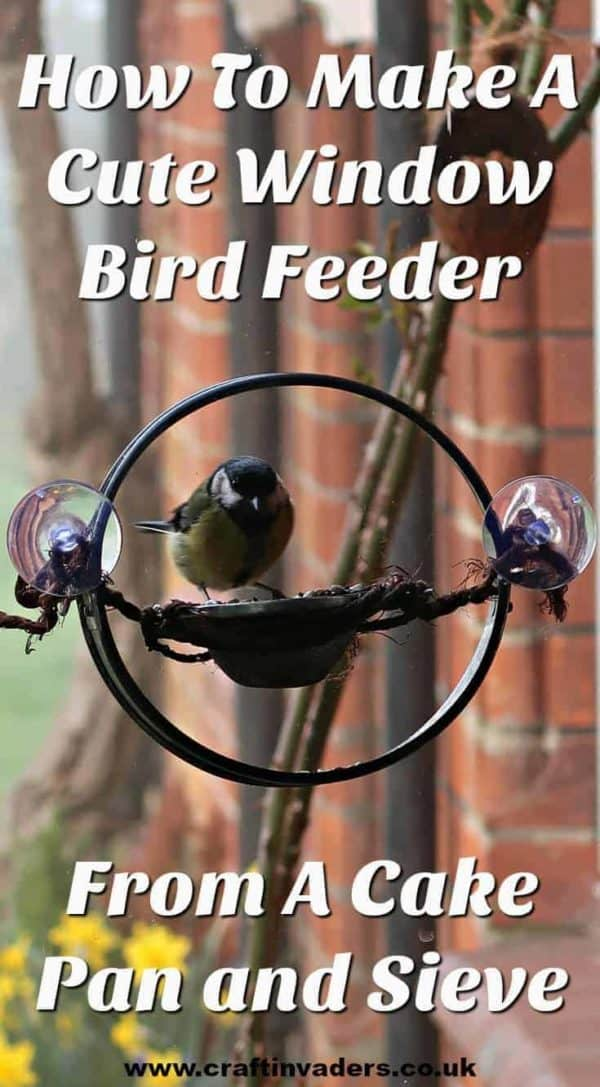 How To Make A Cute Cake Pan Window Bird Feeder