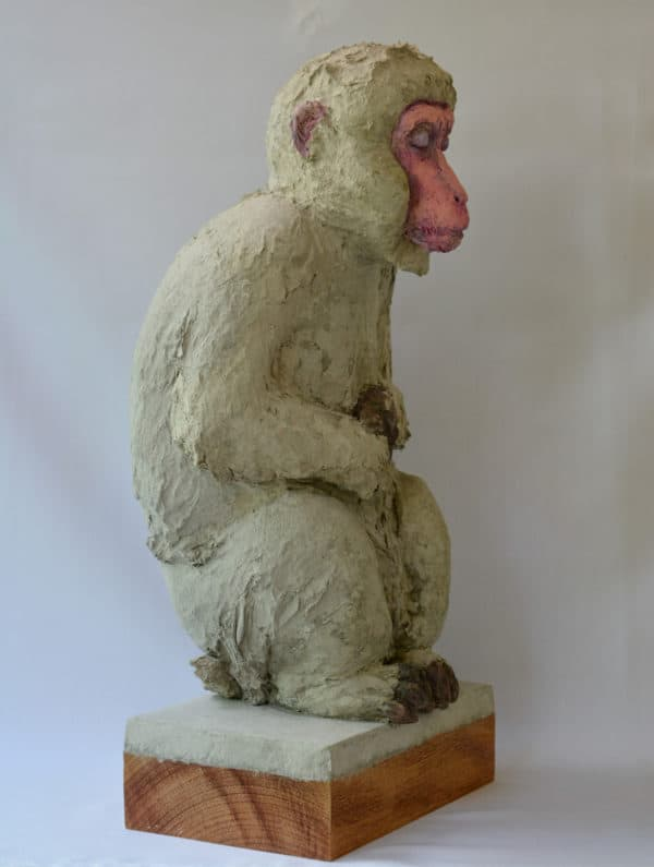 Recycled Egg Box Into Japanese Snow Monkey Recycled Art Recycling Paper & Books