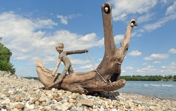The Reincarnation of Driftwood by Tamas Kanya Wood & Organic