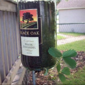 Black-Oak-Plant-Holder