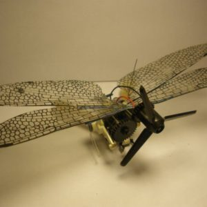 Electronic insects