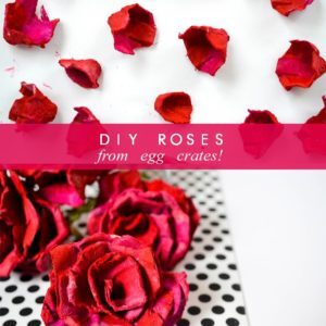 diy roses from egg crates