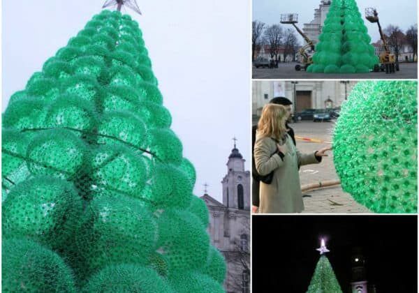 Christmas Tree Made from 40,000 Recycled Plastic Bottles 1