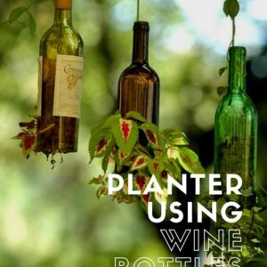 recyclart.org-planter-using-upcycled-wine-bottles-01