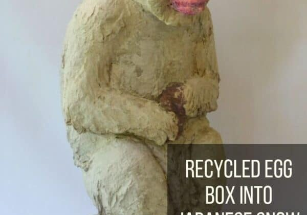 Recycled Egg Box Into Japanese Snow Monkey