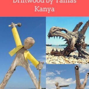 The Reincarnation of Driftwood by Tamas Kanya