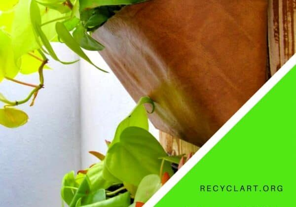 recyclart.org-upcycled-dvd-case-vertical-garden-great-for-indoors-or-outdoors-01