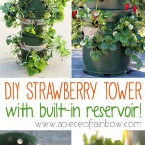 strawberry-tower-apieceofrainbowblog-1